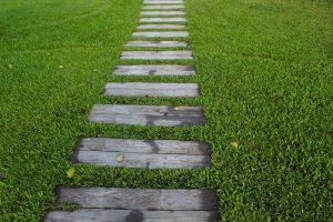traverse en bois dans l'herbe pour illustrer le coaching de Laurence Coiffard